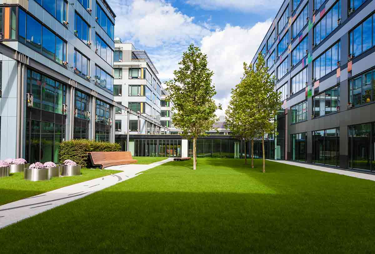 office park with beautiful green grass and healthy trees due to quality commercial landscaping